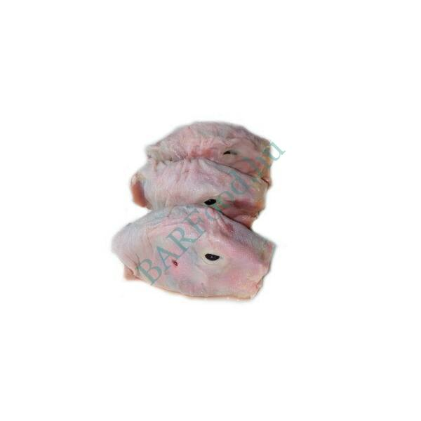 Kacsa fej csőr nélkül 6db